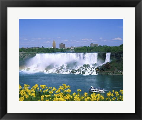 Framed Flowers in front of a waterfall, American Falls, Niagara Falls, New York, USA Print