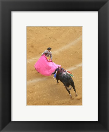 Framed Matador Bullfight Print