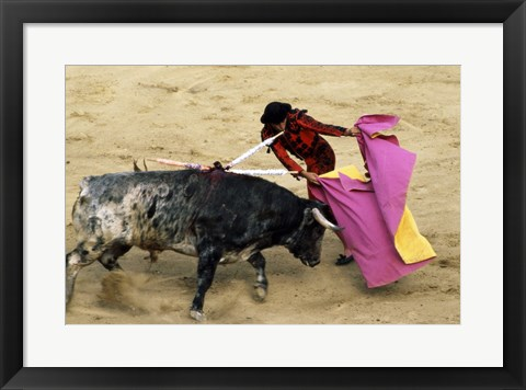 Framed High angle view of a matador fighting with a bull, Spain Print