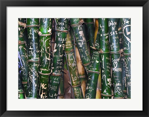 Framed Bamboo Graffiti Print