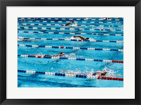 Framed High angle view of people swimming in a swimming pool, International Swimming Hall of Fame, Fort Lauderdale, Florida, USA Print