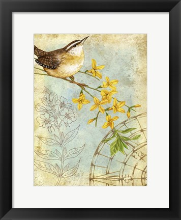 Framed Songbird Sketchbook I Print