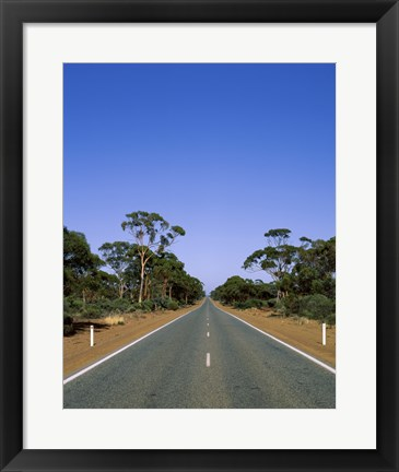 Framed Road passing through a forest, Western Australia, Australia Print