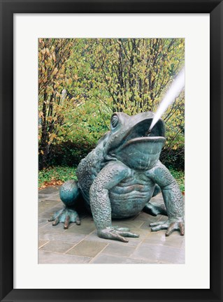 Framed USA, Texas, Dallas, Dallas Arboretum, frog sculpture spitting out water Print