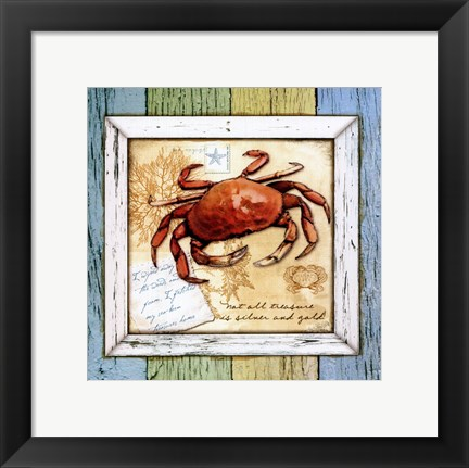 Framed Sea Treasures VIII Print
