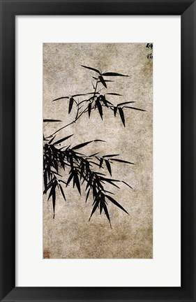 Framed Xia Chang- Ink Bamboo Print
