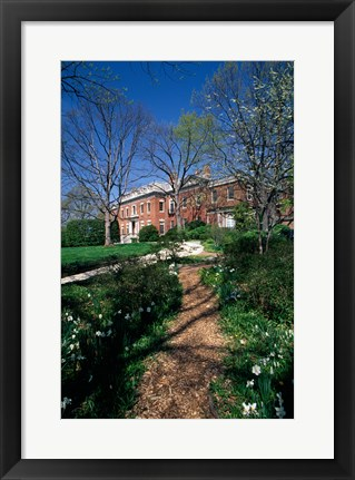 Framed Trees in a garden, Dumbarton Oaks House, Georgetown, Washington DC, USA Print