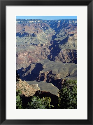 Framed Grand Canyon National Park with Green Trees Print