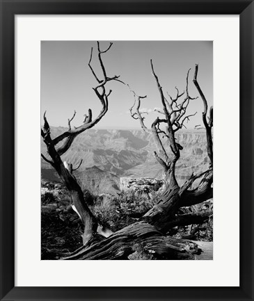 Framed USA, Arizona, Grand Canyon, Colorado River seen from South Rim Print