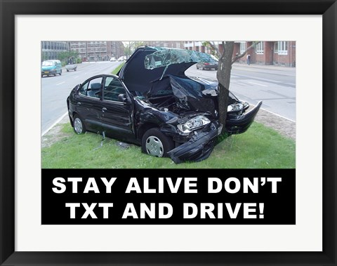 Framed Don't Text and Drive Print