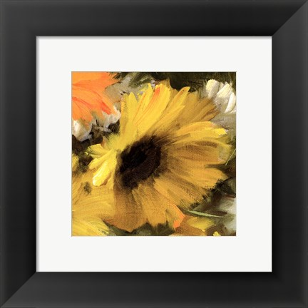 Framed Sunflowers Square II Print