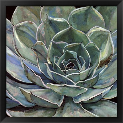 Framed Agave Flower Print