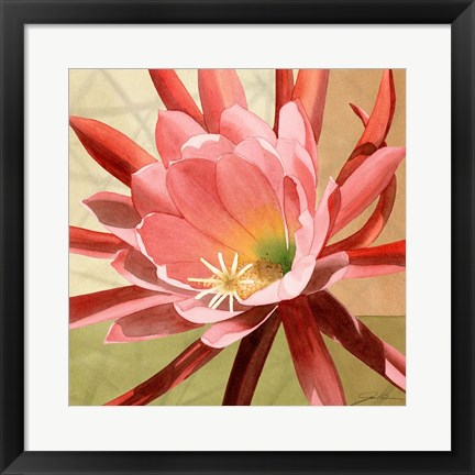 Framed Desert Bloom I Print