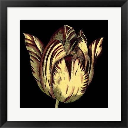 Framed Dramatic Blooms V Print