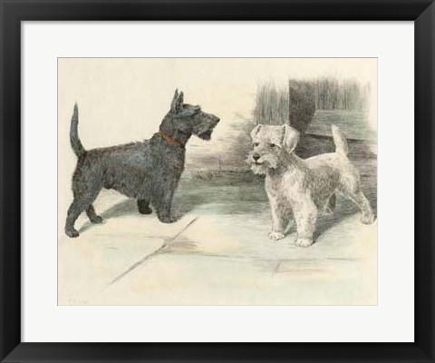 Framed Two Scotties Print
