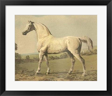 Framed Cassell's Thoroughbred II Print