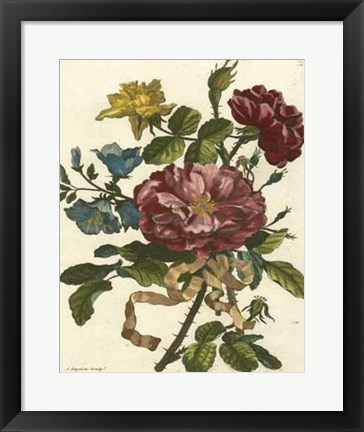 Framed Floral Posy II Print