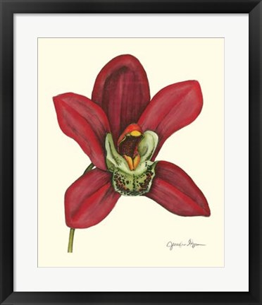 Framed Majestic Orchid III Print