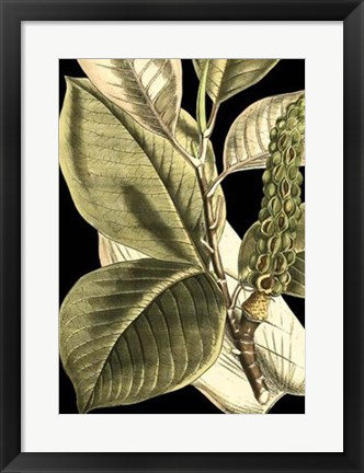 Framed Tranquil Tropical Leaves II Print
