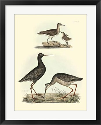 Framed Sandpipers I Print