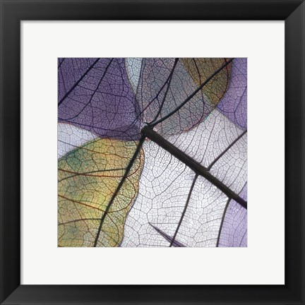 Framed Purple and Grey Leaves II Print