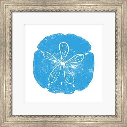 Framed Blue Sand Dollar Print