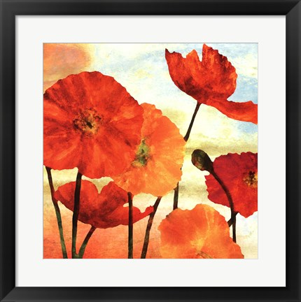 Framed Poppy Variation 2 Print