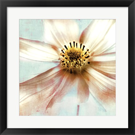 Framed Soft Cosmos Print