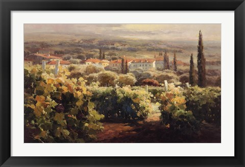 Framed View From the Vineyard II Print