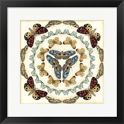 Framed Butterfly Collector IV Print