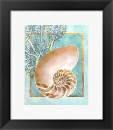 Framed Nautilus Shell and Coral Print