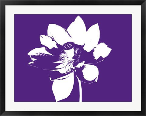 Framed Lilly on Purple Print