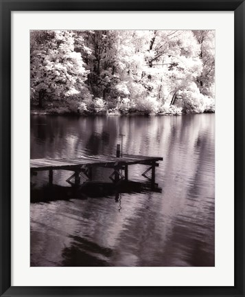 Framed Mint Springs Lake BW V Print