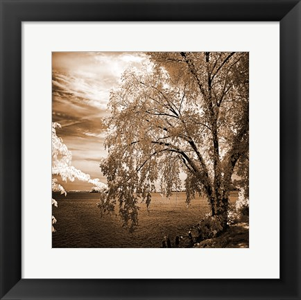 Framed Hopewell Shores Sepia Sq II Print