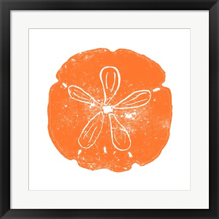 Framed Orange Sand Dollar Print