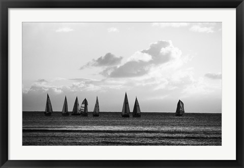 Framed Group of Sailboats Sailing in the Sea Print