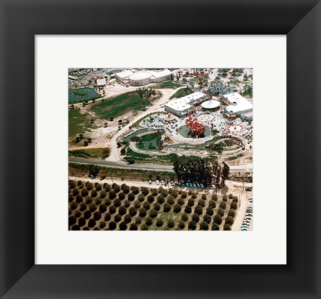 Framed Disneyland and Orange Groves, 1955 Print