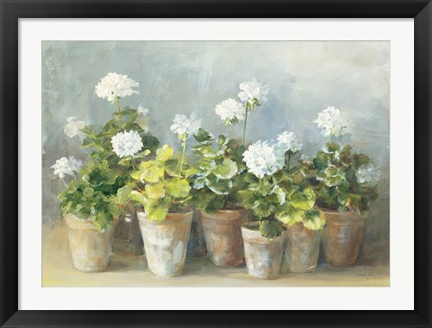 Framed White Geraniums Print