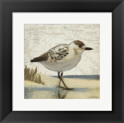 Framed Beach Bird I Print