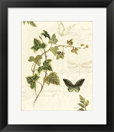 Framed Ivies and Ferns IV Print