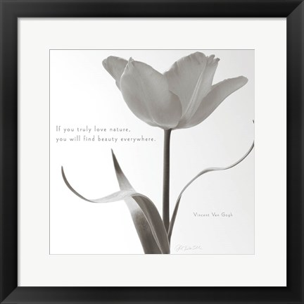 Framed Tulip Beauty Print