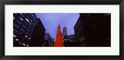 Framed Low angle view of a Christmas tree, San Francisco, California, USA Print