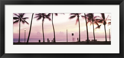 Framed Palm trees on the beach, Waikiki, Honolulu, Oahu, Hawaii Print