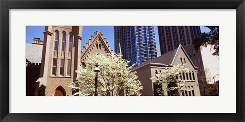 Framed Trees in front of a building, Charlotte, Mecklenburg County, North Carolina, USA Print