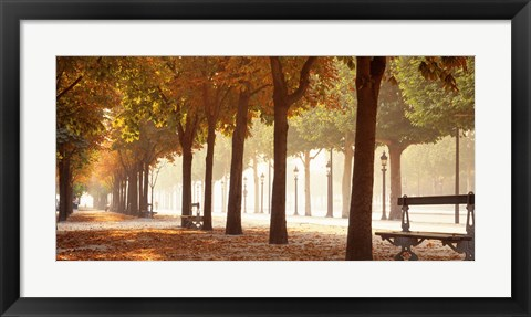 Framed France, Paris, Champs Elysees Print