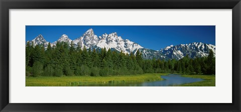 Framed Trees along a river, Near Schwabachers Landing, Grand Teton National Park, Wyoming Print