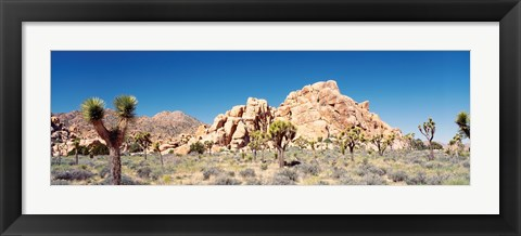 Framed Rock Formation In A Arid Landscape, Joshua Tree National Monument, California, USA Print