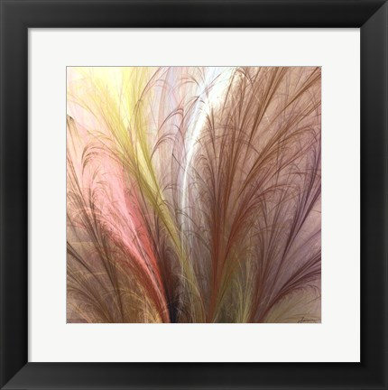 Framed Fountain Grass II Print