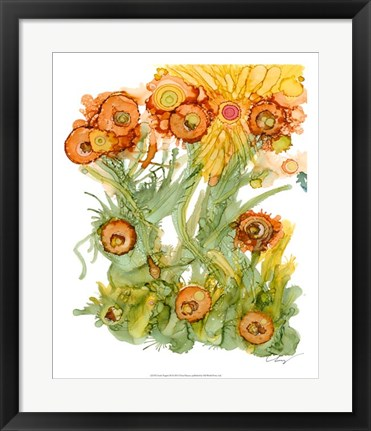 Framed Sunlit Poppies III Print