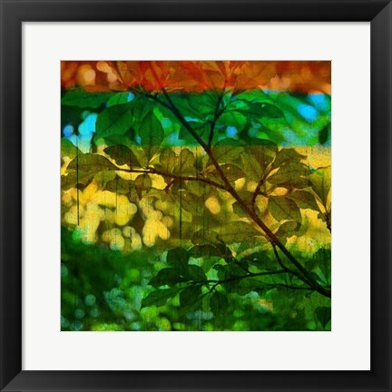 Framed Abstract Leaf Study I Print